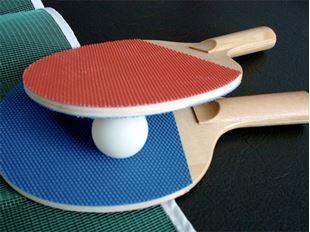 Imagen para la categoría Ping Pong