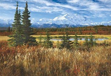 Imagen de Puzzle 1500 Piezas - Parque Nacional Denali, EEUU