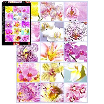 Imagen de Puzzle 1500 Piezas - Collage de Flores